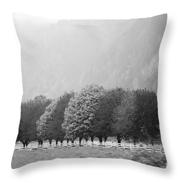 Stillness And Motion Throw Pillow by Sandi Mikuse