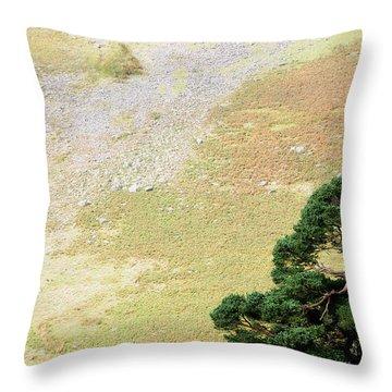 Stillness. Wicklow Mountains. Ireland Throw Pillow by Jenny Rainbow