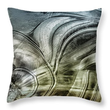 Sting Ray Throw Pillow by Susan Capuano