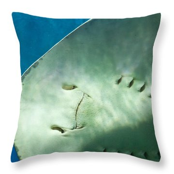 Throw Pillow featuring the photograph Stingray Face by Eti Reid