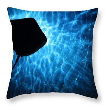 Stingray Silhouette Throw Pillow