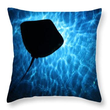 Throw Pillow featuring the photograph Stingray Silhouette by Donna Corless