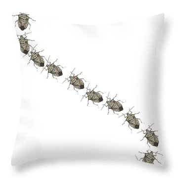 Stink Bugs I Phone Case Throw Pillow
