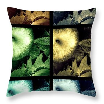 Stone Apples Throw Pillow by France Laliberte