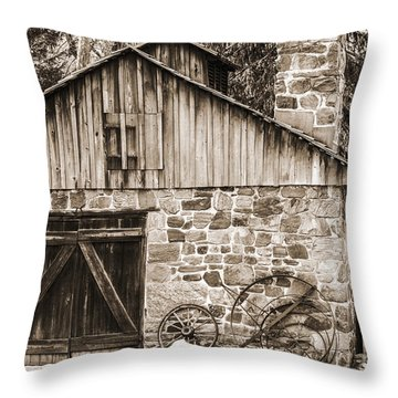 Stone Cabin 2 Throw Pillow by Judy Wolinsky