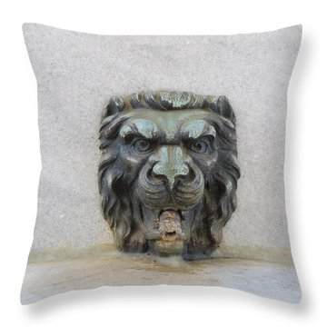 Stone Face Throw Pillow by Aaron Martens