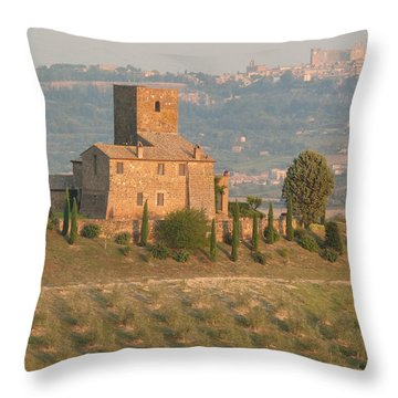 Throw Pillow featuring the photograph Stone Farmhouse by Marcia Socolik