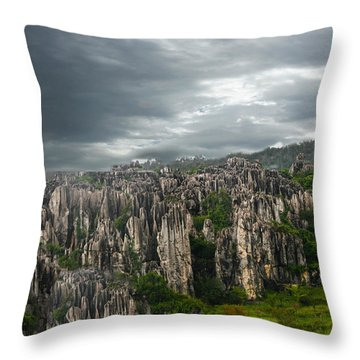 Stone Forest Throw Pillow by Robert Hebert