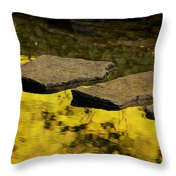 Stone Path Throw Pillow by Maria Angelica Maira