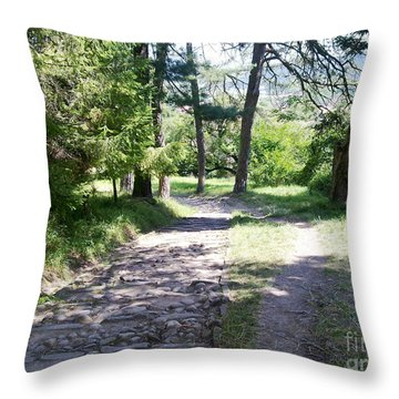 Throw Pillow featuring the photograph Stone Path by Ramona Matei