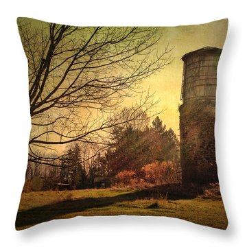 Stone Silo And Water Tower  Throw Pillow by Betty  Pauwels