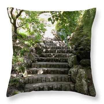 Stone Steps Throw Pillow