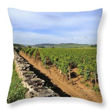 Stone Wall. Vineyard. Cote De Beaune. Burgundy. France. Europe Throw Pillow by Bernard Jaubert