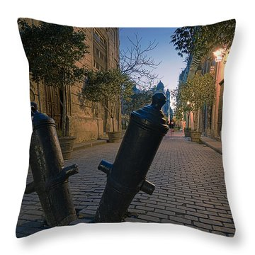 Stoned Afternoon Throw Pillow