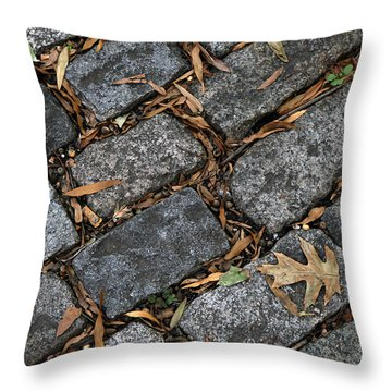 Throw Pillow featuring the photograph Stones 001 by Dorin Adrian Berbier