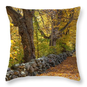 Stonewall In Autumn Throw Pillow by Donna Doherty