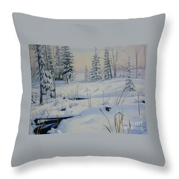 Stoney Swamp Throw Pillow