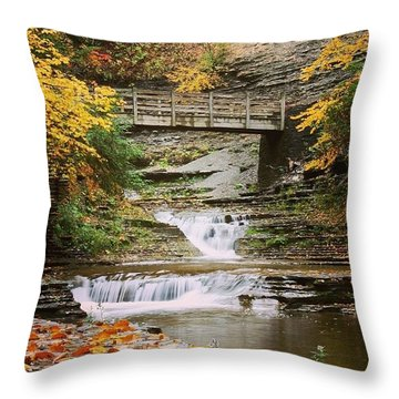 Stony Brook Throw Pillow