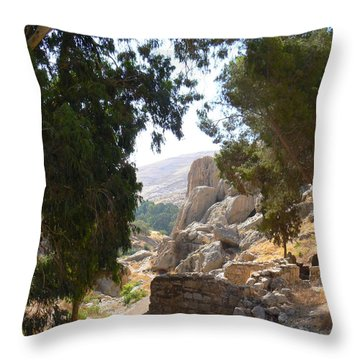 Stony Paths Throw Pillow
