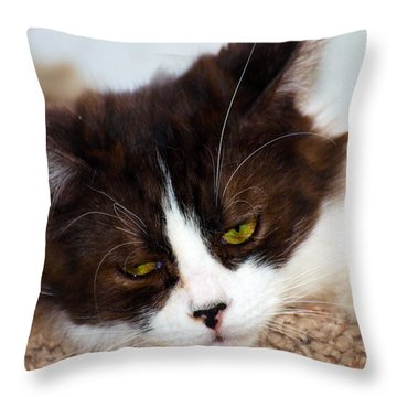 Stop It Your Bothering Me Throw Pillow by Camille Lopez