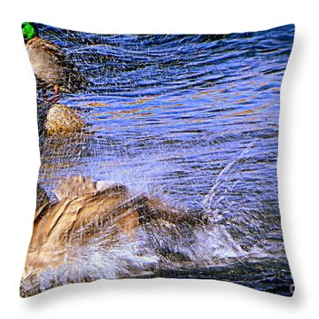 Stop Splashing Throw Pillow