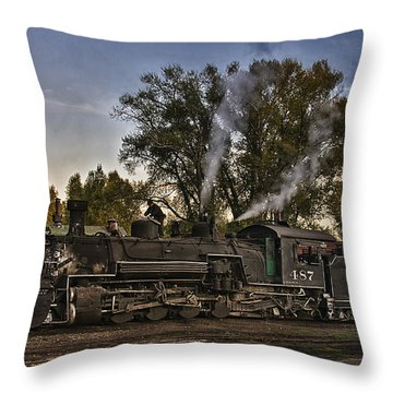 Throw Pillow featuring the photograph Stopped At Chama by Priscilla Burgers