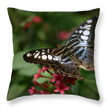 Stopping By Throw Pillow by Denyse Duhaime