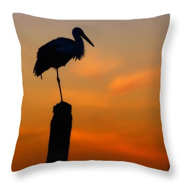Storck In Silhouette High On A Pole Throw Pillow by Nick  Biemans
