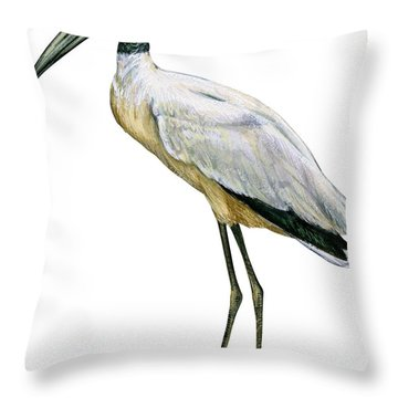 Stork Throw Pillow by Anonymous