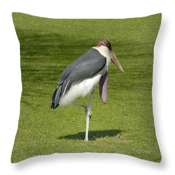 Throw Pillow featuring the photograph Stork by Charles Beeler