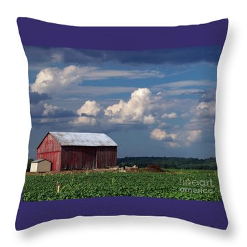 Throw Pillow featuring the photograph Storm Above by Gena Weiser