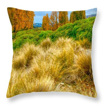 Storm Approaches Throw Pillow