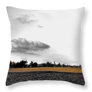 Storm Approaching - Mt Vernon Throw Pillow