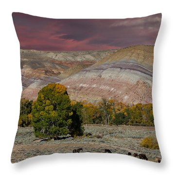 Storm Clouds Above The Wind River Basin Throw Pillow