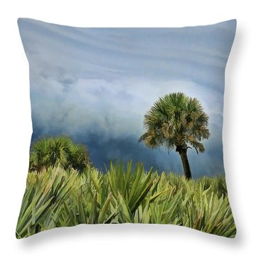 Storm Coming Throw Pillow by Kenny Francis