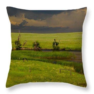 Storm Crossing Prairie 1 Throw Pillow