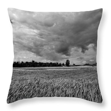 Storm Field - Canada Throw Pillow