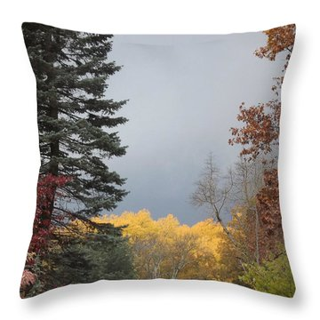 Storm In Hidden Gardens Throw Pillow