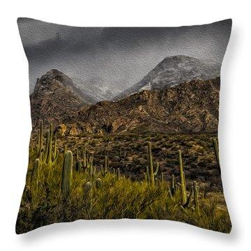 Storm Over Catalinas Aso Throw Pillow by Mark Myhaver