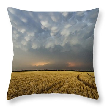 Storm Over Wheat Throw Pillow
