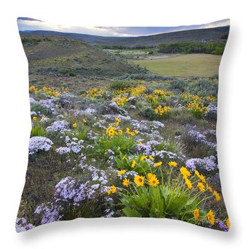 Storm Over Wildflowers Throw Pillow by Mike  Dawson