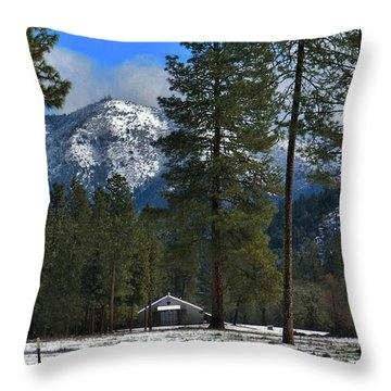 Throw Pillow featuring the photograph Storm Rewards by Julia Hassett