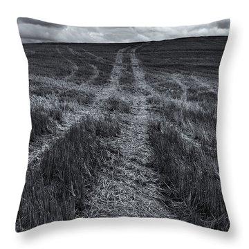 Storm Tracks Throw Pillow by Mike  Dawson