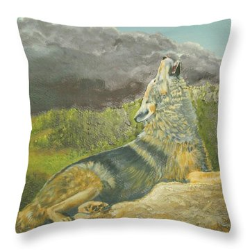 Storm Warning Throw Pillow by Ruth Seal