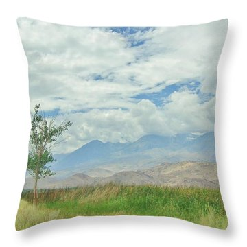 Throw Pillow featuring the photograph Stormin by Marilyn Diaz