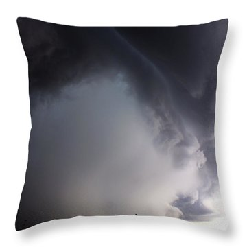 Storms Fury Award Winner Throw Pillow
