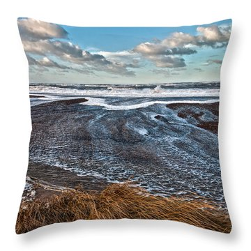 Stormy Beach Throw Pillow by Mike Santis