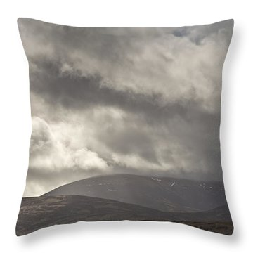 Stormy Cheviots Throw Pillow