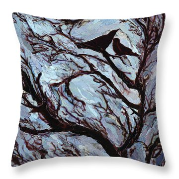 Stormy Day Greenwich Park Throw Pillow by Ellen Golla
