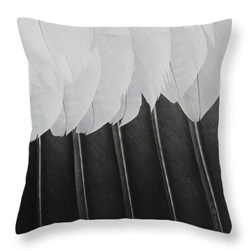 Throw Pillow featuring the photograph Stormy Feathers by Judy Whitton
